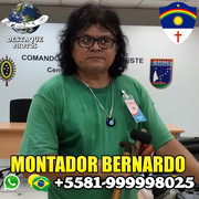 BernardoMontador